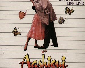 Aashiqui (1990) Hindi Movie 400MB BRRip 420P