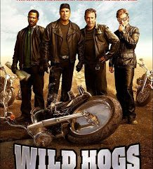 Wild Hogs (2007) BRRip 420p 300MB Dual Audio