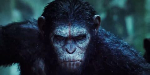 Dawn Of The Planet Of The Apes (2014)  Trailer