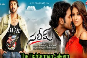 The Fighterman Saleem (2009) Telugu Movie