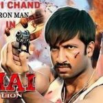 Bhai The Lion (2007) Hindi Dubbed Movie Free Download In HD 480p 300MB