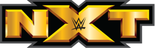 WWE NXT 11th February (2015) 200MB Download