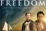 Freedom 2014 DVDRip 280MB 480p