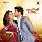 Wedding Pullav (2015) Hindi Full Movie Watch Online HD 480p